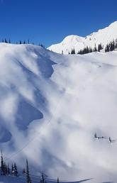 Wolverine tracks are visible in the snow covering a mountainside