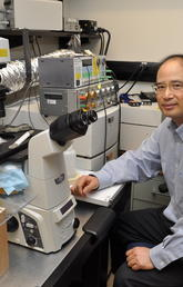 Dr. Wayne Chen, PhD, in his lab